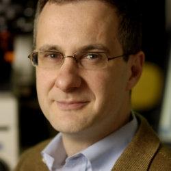 Denis Wirtz, PhD