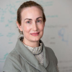 Mollie Meffert, PhD